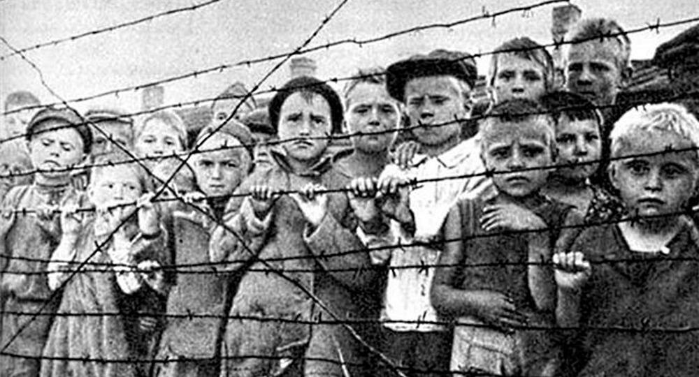Александр Асмолов: Тема холокоста должна звучать в системе просвещения  более активно | Вести образования