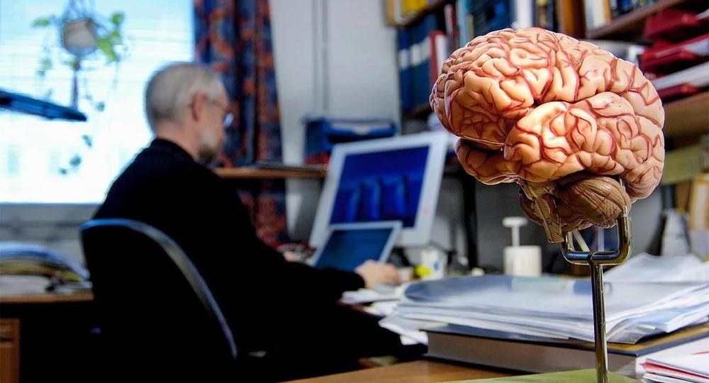 Google и Гарвард создали самую детализированную 3D-карту человеческого мозга