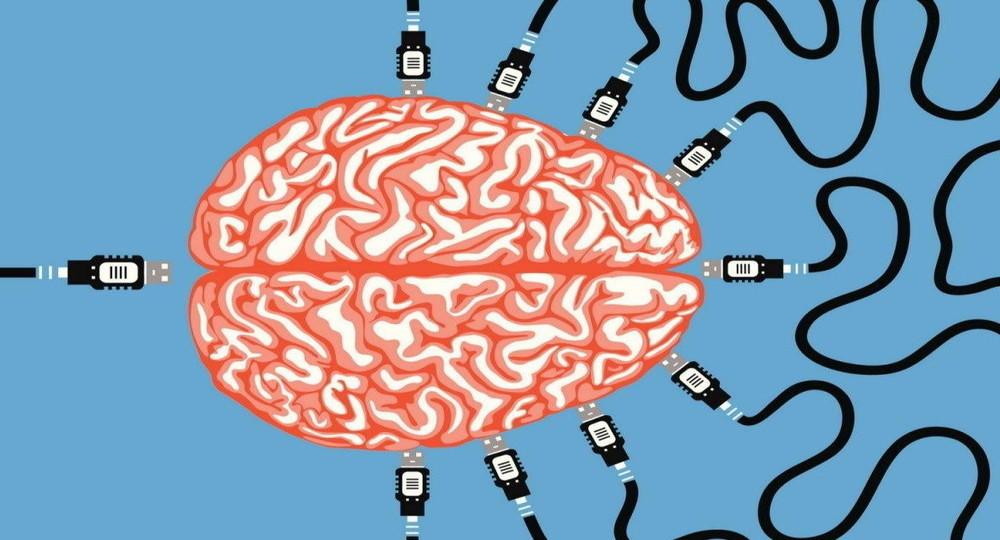 Минобрнауки опровергло разработку федеральной программы по чипированию мозга